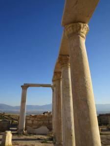 Ionic Pillars