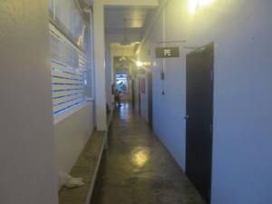 Classroom-theme dorms
