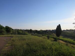 Pemandangan pagi di Tavarnelle