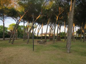 Taman kecil di belakang Ostello Chianti