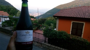 the wine and the view, perfect companion.