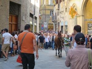Kerumunan para pendukung Contrada mengantarkan kuda jagoannya
