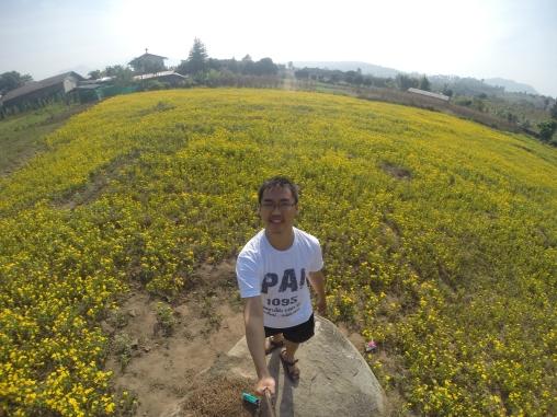 foto kekinian di tengah padang berbunga
