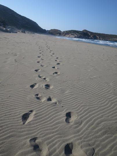 Langkah kakiku