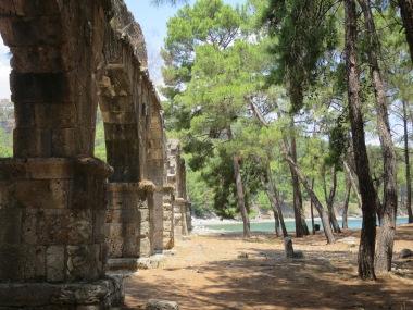 Reruntuhan aquaduct di tengah hutan pinus