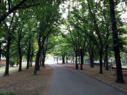 Taman di Rimini yang adem