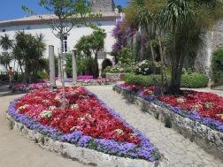 Bunga-bunga cantik di taman