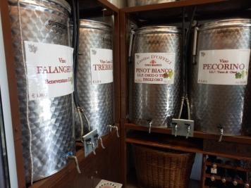 Berbagai pilihan anggur