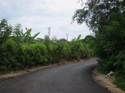 Jalan beraspal dengan 1.5 jalur
